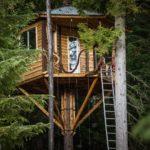 Bicycle Powered Tree Home Elevator